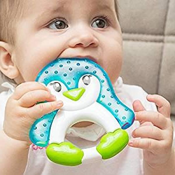 perle anneau de dentition